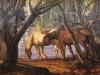 Caballos en la Aguada